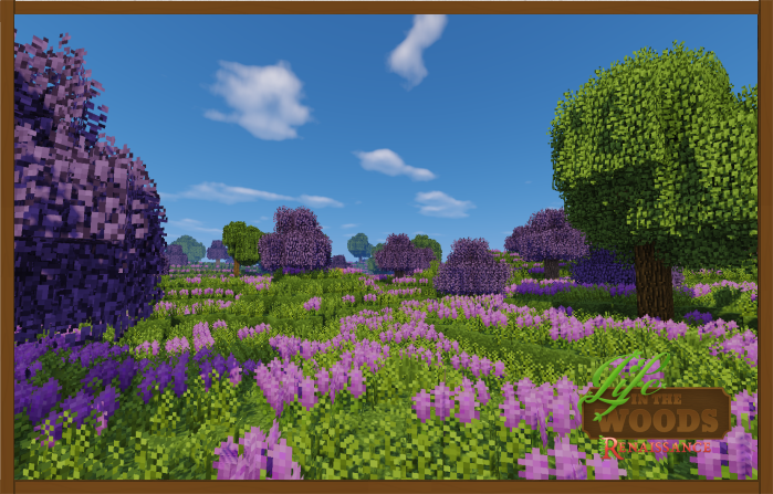 Life_in_the_woods_lavender_fields_large.png